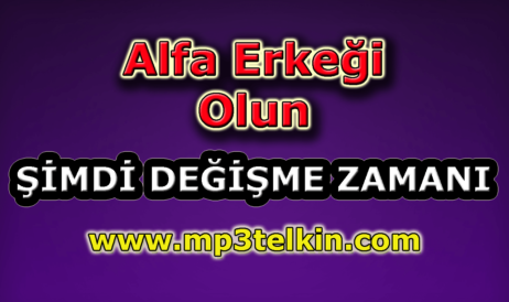 mp3telkin-youtube-alfa-erkegi-olun