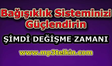 mp3telkin-youtube-bagisiklik-sisteminizi-guclendirin
