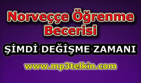 mp3telkin-youtube-norvecce-ogrenme-becerisi