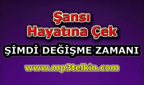 mp3telkin-youtube-sansi-hayatina-cek